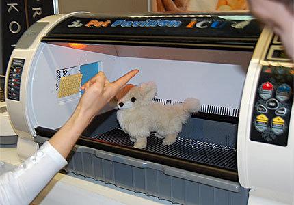 si tratas a tu mascota como a uno ms de la familia y si tienes mucho dinero este producto te puede interesar se trata de una recmara para tu mascota
